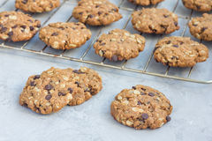 Flourless gluten free peanut butter, oatmeal and chocolate chips cookies on a cooling rack, horizontal Royalty Free Stock Photos