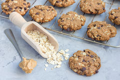 Flourless gluten free peanut butter, oatmeal and chocolate chips cookies on cooling rack, horizontal Royalty Free Stock Photography