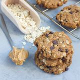 Flourless gluten free peanut butter, oatmeal and chocolate chips cookies on cooling rack, square format. Flourless gluten free peanut butter, oatmeal and Stock Images