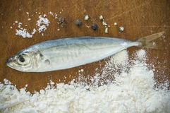 Floury fish on a wooden background Royalty Free Stock Photo