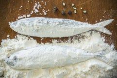 Floury fisk på en träbakgrund Fotografering för Bildbyråer