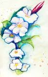 Flover watercolor. Drawing watercolor paints the image of a fictional flower Royalty Free Stock Photo