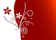 Flovers. Red and white flower vector background Royalty Free Stock Photo