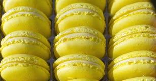 Flovers bleeMacarons cake - snoepje - dessert - snoepje - sierlijk gebak - - zoetigheid royalty-vrije stock fotografie