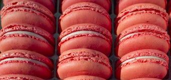 Flovers bleeMacarons cake - snoepje - dessert - snoepje - sierlijk gebak - - zoetigheid royalty-vrije stock foto's