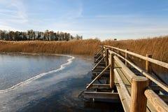 Flow boardwalk. Stock Photos