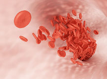 Flow of erythrocytes Stock Photo