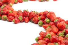Flow of fresh harvested strawberries. Stock Photo