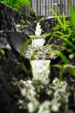 Flow of fresh mountain water to the ground royalty free stock photos