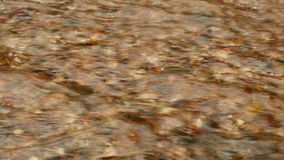 Flow of the River. Autumn daytime stock footage