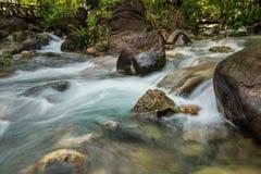 Flow of sream in park Stock Image