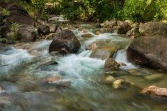 Flow of sream in park Stock Images