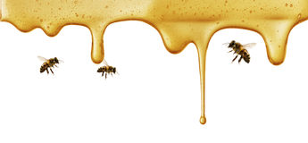 Flow of sweet honey on the white background Royalty Free Stock Images