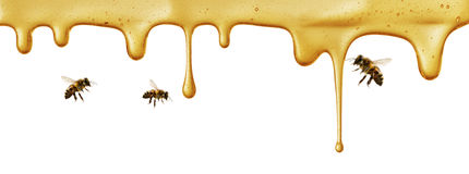 Flow of sweet honey on the white background Royalty Free Stock Image