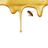 Flow of sweet honey on the white background Stock Photo