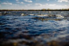 Flow of water close up. Quiet river water in the evening light background,flow of water close up royalty free stock photo