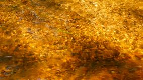 Flow gold water. Flow of water in the sunlight, abstract background of gold color stock footage