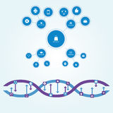 Flowchart scheme of circles of different sizes connected by straight lines in flat style. Interaction is depicted as chain of DNA. Royalty Free Stock Image