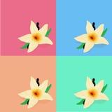 FlowerΠLizenzfreie Stockfotografie