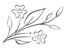 Flower. Silhouette of flower isolated in white background Stock Photography