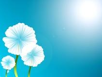 Flower. White flower over blue background. nature illustration Royalty Free Stock Image