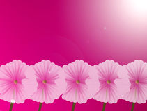 Flower. Pink flowers over fuchsia background. nature illustration Stock Images