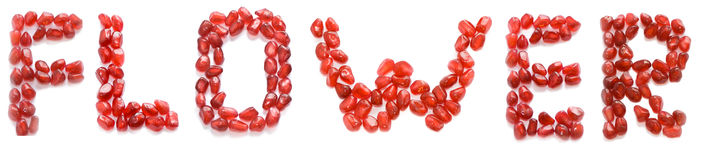 Flower. Word flower of red pomegranate letters Stock Photo