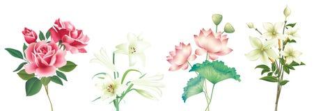 Flower-1 stock de ilustración