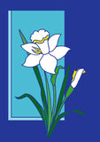 Flower. Good for postcards and background uses vector illustration