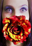 Flower. Image of a girl with a rose Stock Photography
