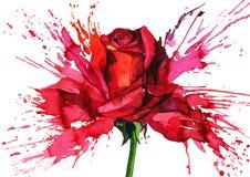 Free Flower Royalty Free Stock Photo - 21593175