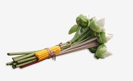 Flower  . Flower  for buddhist religious ceremony Stock Image