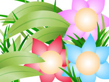 Flower. Floral frame design, vector illustration Royalty Free Stock Photography