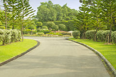 Flower. Road and beautiful garden in park Stock Image