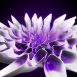 Flower 3D rendered violet Royalty Free Stock Photography