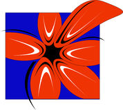 Flower. A red flower coming out of the box royalty free illustration