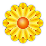 FLower. Yellow flower illustration with clipping path Royalty Free Stock Photos