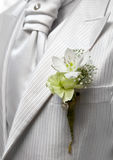 Flower. Closeup shot of flower in buttonhole. Groom suit Stock Photo
