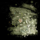 Flower. Floral design, grunge abstract background Stock Images