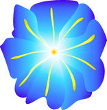 Flower. Blue flower Royalty Free Illustration