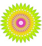 Flower abstract- circular pattern Royalty Free Stock Photography