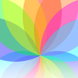 Flower abstract multicolored Royalty Free Stock Photography