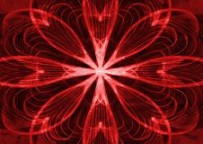 Flower abstract texture red background stock image