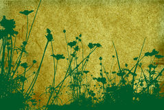 Flower abstract textures and b Royalty Free Stock Photography