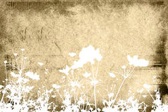 Flower abstract textures and b Royalty Free Stock Image
