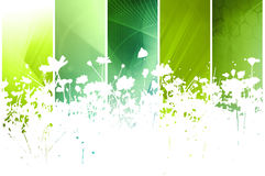Flower abstract textures and backgrounds Stock Photos