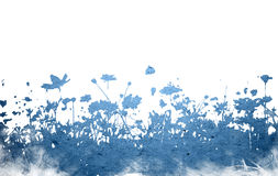Flower abstract textures and backgrounds Royalty Free Stock Images