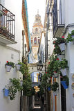 Flower Alley in Cordoba stock photography