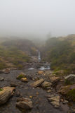 Walking on the river and with very low fog. Walking on the river royalty free stock photography