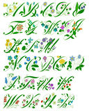 Flower alphabet. The picture shows all the letters decorated with a floral style Stock Illustration